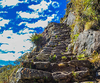 Inca Trail 2D/1N Bioandean expeditions